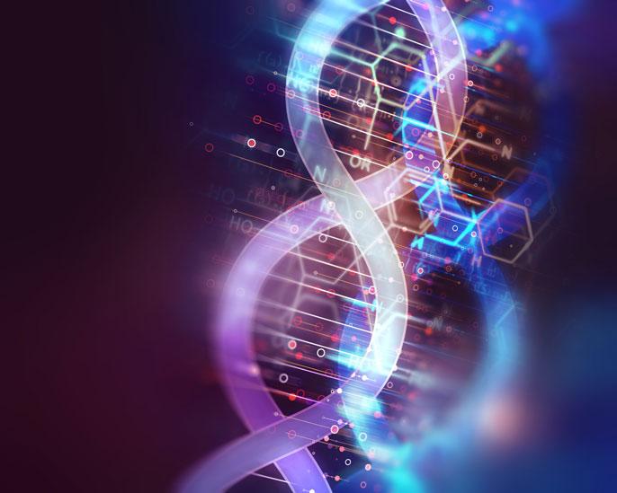 Genetica della conservazione di Apis Mellifera
